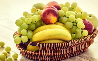 말보다 더 중요한 것은 열매